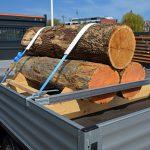 Holzstämme Ladungssicherung